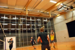 volleyball-halle4